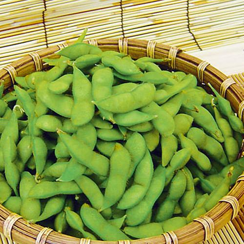 <山形県産>秘伝豆 1.5kg
