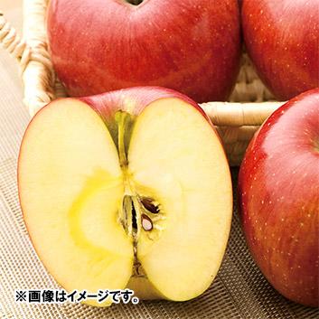 <長野県産>果汁たっぷり あいかの香り3kg(7~9玉)