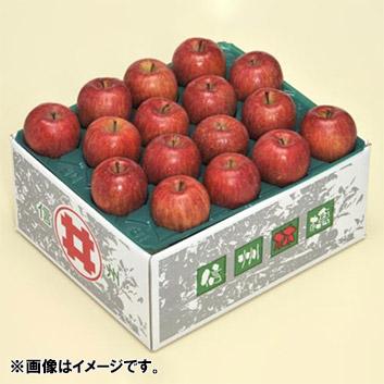 <長野県>訳ありリンゴ10kg