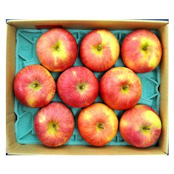 <ゴールド農園>葉とらずりんごサンふじ 2kg
