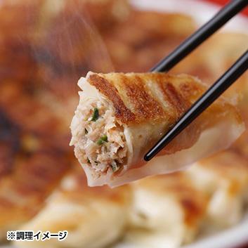 宇都宮餃子とんきっき32個入り×2箱