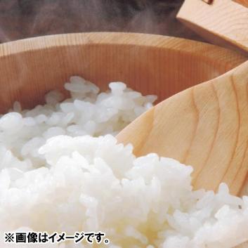 【新米】<押野農園>山形県産特別栽培米つや姫10kg
