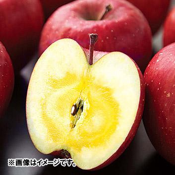 <ナカムラ果樹園>青森県産 サンふじ3kg