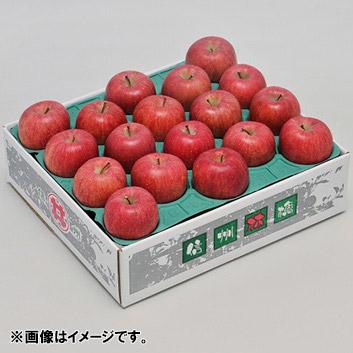 <長野県>訳ありリンゴ 5kg