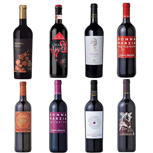 【送料無料】本間チョースケセレクト イタリア飲み尽くし赤ワイン8本セット