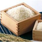 【新米】新潟県産 こしひかり 9kg(5kg×1袋、2㎏×2袋)