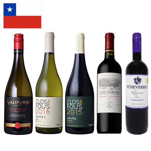 【送料無料】単一ブドウ品種でチリを味わう!赤白ワイン5本セット