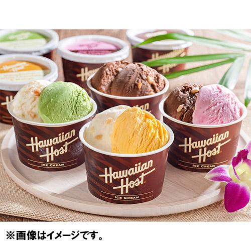 [ハワイアンホースト]マカダミアナッツ チョコ アイス