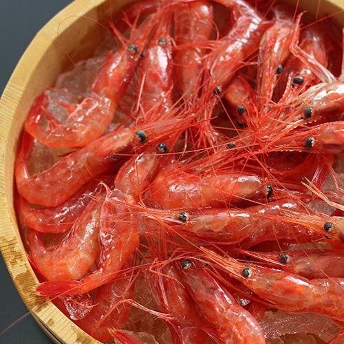 蝦名漁業部 北海道羽幌産 甘えび詰合せ