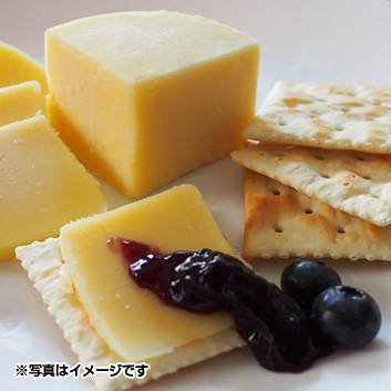 CAWS CENARTH CHEESE 5種セット