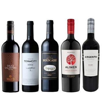 【ANAセレクション】世界の濃厚フルボディ赤ワイン5本セット