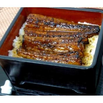 <薩摩川内鰻>鹿児島県産鰻長蒲焼3尾セット
