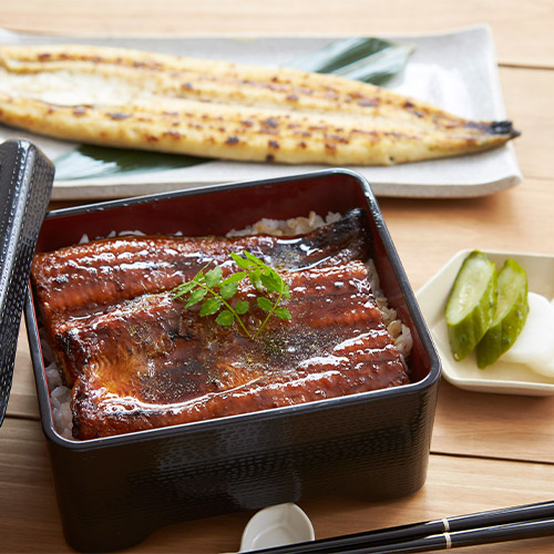 <薩摩川内鰻>鹿児島県産鰻長蒲焼・白焼きセット