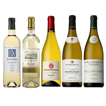 【ソムリエセレクション】IWC受賞生産者が造るワインが1本入った、白ワイン5本セット