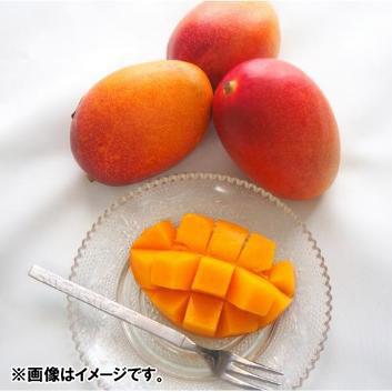 沖縄県長嶺農園別格「林檎」マンゴー秀品1kg(2玉)