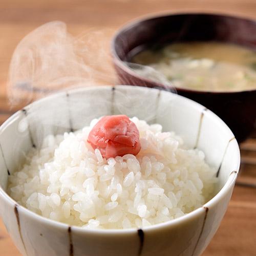 特別栽培米佐渡産コシヒカリ 2kg×3袋