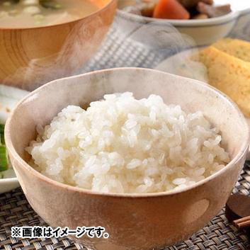 【新米】新潟県山古志産コシヒカリ 2kg×3