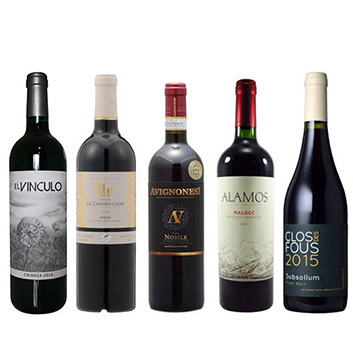 【送料無料】A-styleソムリエが選んだ、機内ワインが入った赤ワイン5本セット(2020)