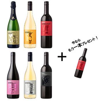 ★赤ワインもう1本プレゼント★Because,シリーズワインアソート6本セット