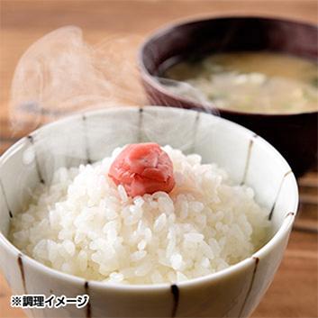 【新米】<新潟県佐渡産>特別栽培米こしひかり 6kg