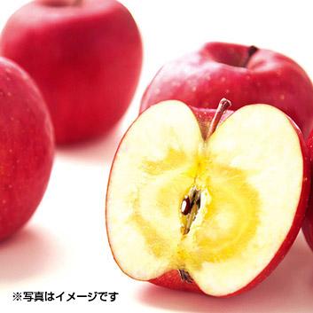 <青森県>ナカムラ 蜜入りサンふじりんご1.8kg