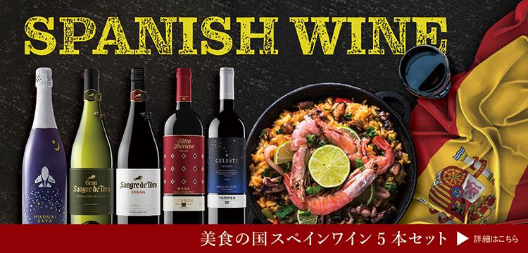 【送料無料】美食の国スペインワイン5本セット
