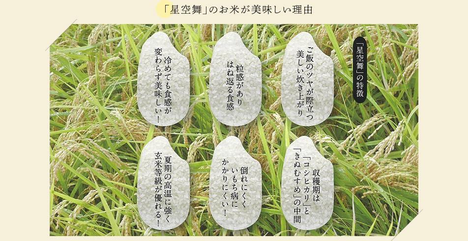 「星空舞」のお米が美味しい理由