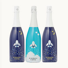 <ANAオリジナル>HIKOUKI CAVA(飛行機カヴァ)青空・星空3本セット