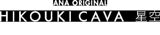 ANA ORIGINAL HIKOUKI CAVA 星空 白スパークリングワイン