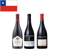 【送料無料】機内ワインが入った、チリ赤ワイン フルボディ&ミディアムボディ飲み比べ3本セット