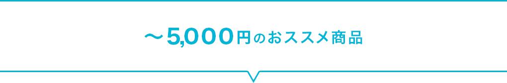 ~5,000円のおススメ商品