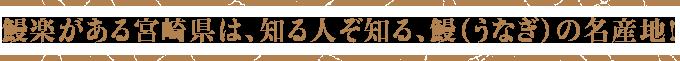 鰻楽がある宮崎県は、知る人ぞ知る、鰻(うなぎ)の名産地!